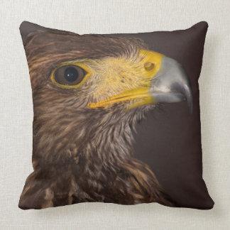 Hawk close up throw pillow