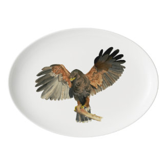 Hawk Flapping Wings Watercolor Painting Porcelain Serving Platter