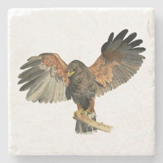 Hawk Flapping Wings Watercolor Painting Stone Coaster