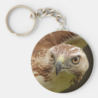 Hawk Head Keychain