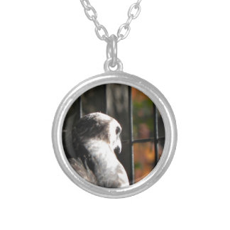 Hawk in a bird sanctuary silver plated necklace