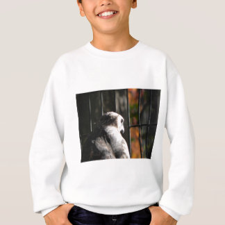 Hawk in a bird sanctuary sweatshirt