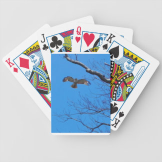 Hawk in flight poker deck