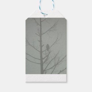Hawk In The Mist Gift Tags