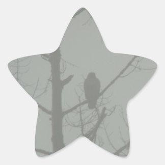 Hawk In The Mist Star Sticker