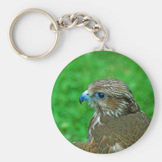 Hawk Keychain