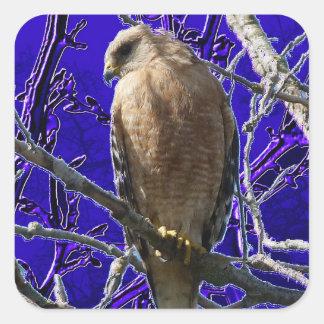 Hawk with fantasy purple background square sticker