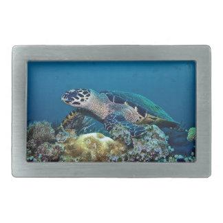 Hawkbill Turtle Belt Buckle