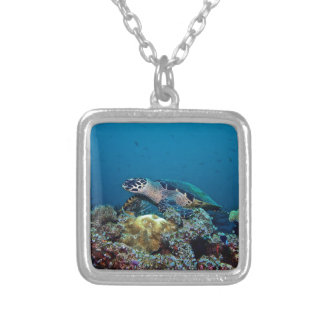 Hawkbill Turtle Silver Plated Necklace