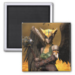 Hawkgirl Magnets