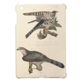 Hawks iPad Mini Cover