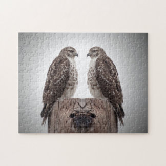 Hawks on a post jigsaw puzzle