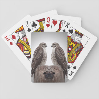 Hawks on a post playing cards