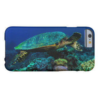Hawksbill Sea Turtle on the Great Barrier Reef Barely There iPhone 6 Case