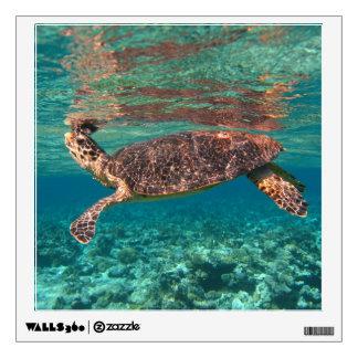 Hawksbill Sea Turtle Wall Decal