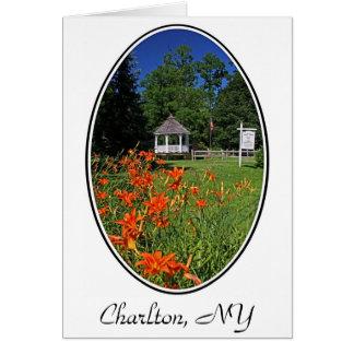 Hawley Park, Charlton, NY Greeting Card
