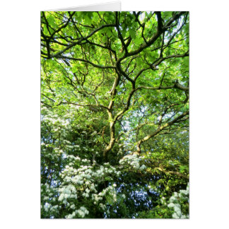 Hawthorn and Oak Handfasting Card