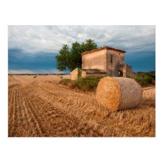 Hay bale in Provence field Postcard