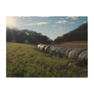 Hay Bales in a Sunny Field Wood Print