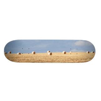 Hay Bales on Field Skate Board Deck