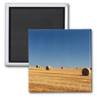 Hay Bales Square Magnet