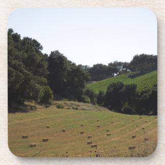 Hay Field Below Vineyard in Paso Robles Coasters