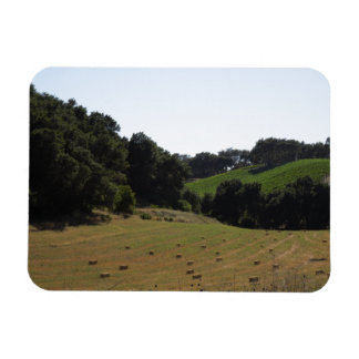 Hay Field Below Vineyard in Paso Robles Rectangular Photo Magnet