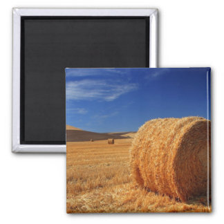 Hay Fields Square Magnet