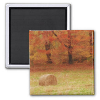 Hay Harvest In The Autumn Field Square Magnet