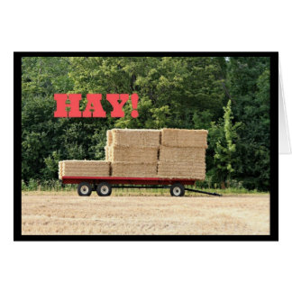 Hay! How Ya Been? Greeting Card