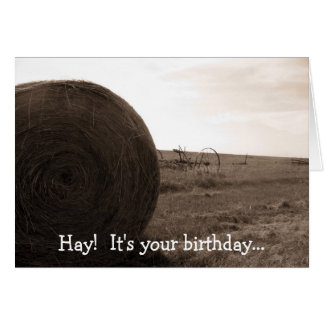Hay!  It's your birthday... Card