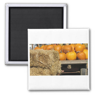 Hay Ride Square Magnet