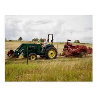 Haying in Golden Ranch Fields Postcard