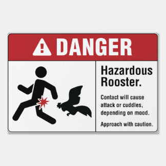 Hazardous Rooster Yard Sign