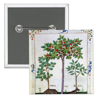 Hazelnut Bush  and Cherry tree 2 Inch Square Button
