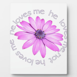 He Loves Me He Loves Me Not Plaque