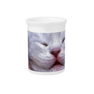 Head newborn silver tabby cat sleeping on hand drink pitchers