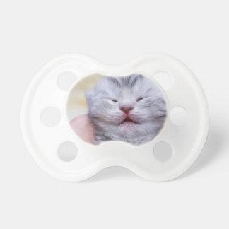 Head newborn silver tabby cat sleeping on hand pacifier