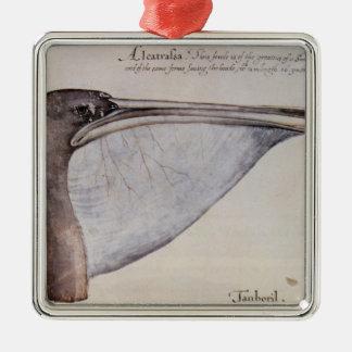 Head of a Brown Pelican Silver-Colored Square Ornament