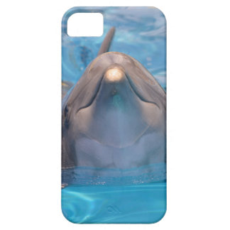 Head of  bottlenose dolphin iPhone 5 cases