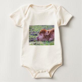 Head of brown newborn scottish highlander calf baby bodysuit