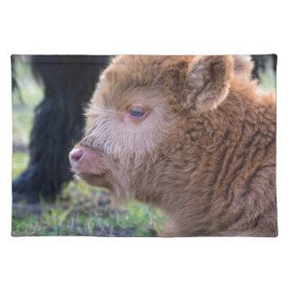 Head of Brown newborn scottish highlander calf Place Mats