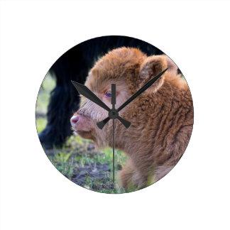 Head of Brown newborn scottish highlander calf Round Clock