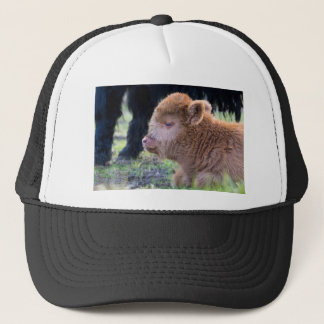 Head of Brown newborn scottish highlander calf Trucker Hat