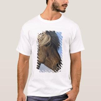 Head of Icelandic horse, Iceland T-Shirt