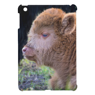 Head of lying Brown newborn scottish highlander iPad Mini Covers