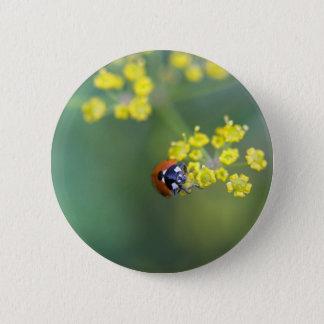 head on ladybug 2 inch round button