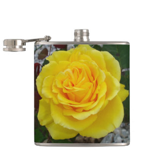 Head On View Of A Yellow Rose Hip Flask