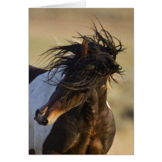 Head Shake Wild Horse Greeting Card