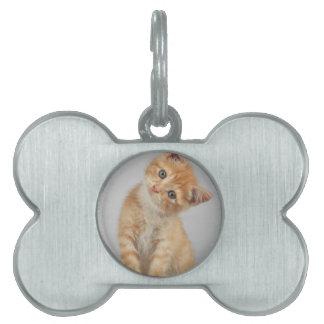 Head Tilt Kitten Pet Tags